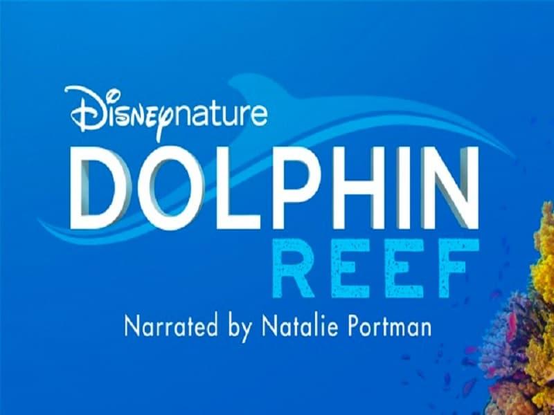 dolphin reef, disney plus