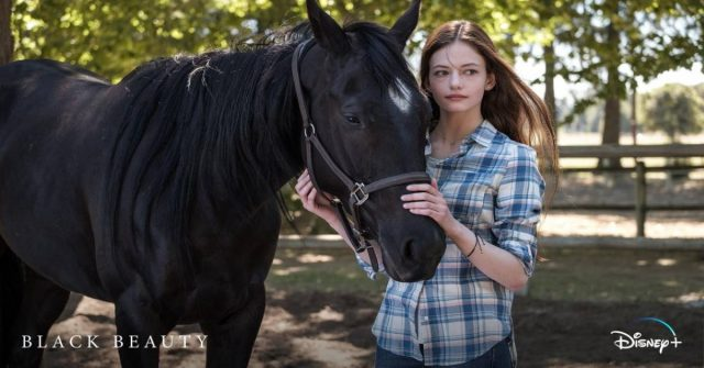 black beauty, disney plus